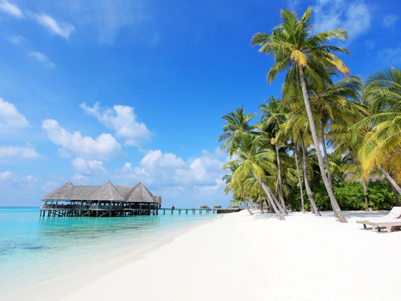 Cocoon Resort Maldives Beach Villa