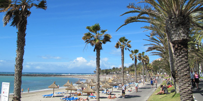 Playa del Camison in Playa de las Americas